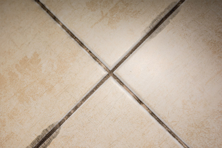 6 Reasons to Investigate Mold Mildew on Tile Surfaces
